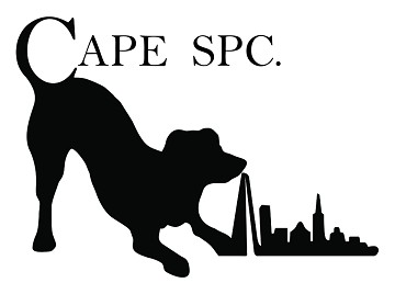 CAPE SPC: Exhibiting at the Holiday Park & Resort Innovation Show